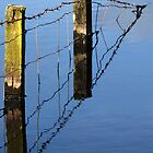 fence in by dinghysailor1