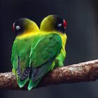 Pair of Birds by Richard Skoropat