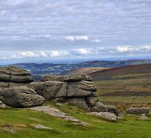 View from Haytor, Dartmoor, Devon by Squealia