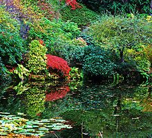 Butchart Gardens 38 by James Birkbeck