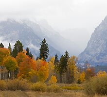 Cascade Canyon, Snow Showers & Fall Color by A.M. Ruttle