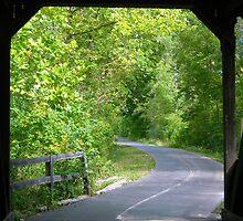 Looking 0ut 0f The Bridge From The Inside. by debbiedoda