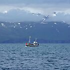 Whale watching in Húsavik by Peter Zentjens