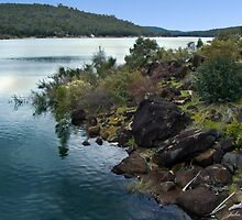 Mundaring Weir by Julia Harwood