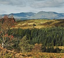 The Coniston Fells by Steve  Liptrot