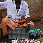 Fisho! Fish Seller at the Market India by Jane McDougall