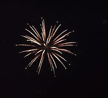 Fireworks Flower by silverdew