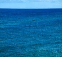 Blue Horizon by Renee Hubbard Fine Art Photography