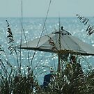 Beach Umbrella thru the Grass by KBSImages
