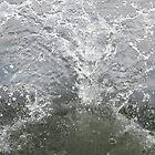 Splash!!!!!!!!! by Camberleigh Myers