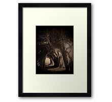ancient yew Framed Print