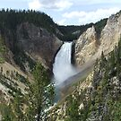 Yellowstone Falls by Graham Deeprose