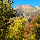 Autumn Peak by Marc McDonald