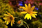 Fall Flowers by LudaNayvelt