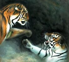 Cat Fight by Tom Godfrey