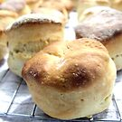 Scones by Bailey Designs