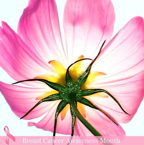 Breast Cancer Awareness by kibishipaul