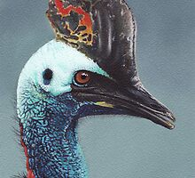 Cassowary by Scott Simpson