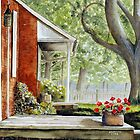 Back Porch Geraniums by jwwalker