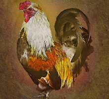 Rooster by David's Photoshop