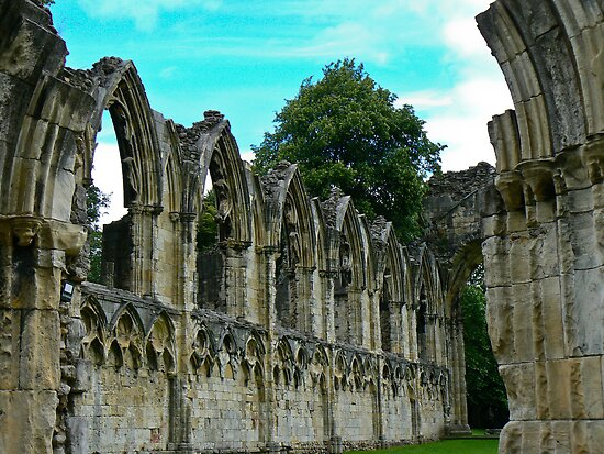 St Marys Ruins - Museum Gardens York by Trevor Kersley