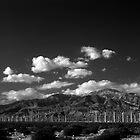 Windmills by PhotoBearUK