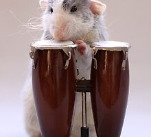 The percussionist :) by Ellen van Deelen