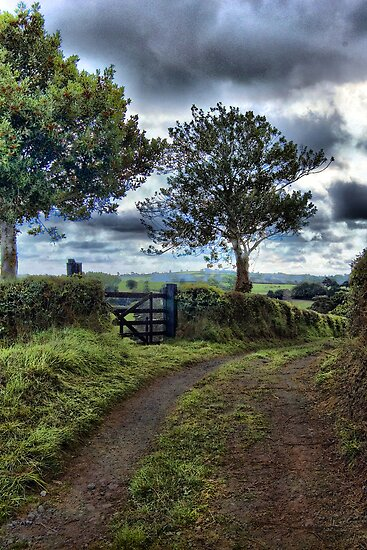 Farm track, near Tedburn St Mary, Devon by Squealia