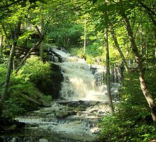 Water Falls in the Catskill Mt's. by ronf1492