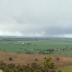 Wimmera Plains by Lynton Brown