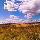 Wembury Panoramic, Devon, UK by BS6 Photography