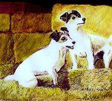 """""""A Pair of Jacks"""" by Peter Morris"""