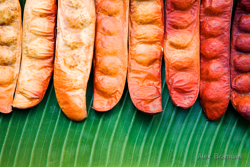 Tropical Beans by Alex  Bramwell