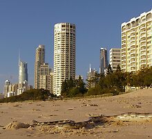 Sea snake beached at Surfers Paradise by Dave P