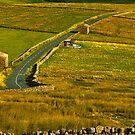 Dales Road by Trevor Kersley