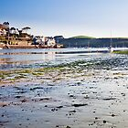 Salcombe Harbour by Kerry Dunstone