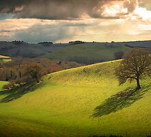 April Light by Nigel Finn