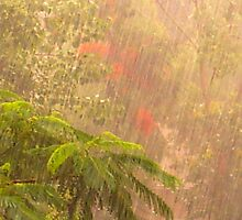 Hail, Rain and a Storm by HansBellani