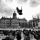 Royal Palace of Amsterdam by andreisky