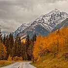 Road to the Bells by Ann J. Sagel