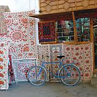 Embroideries & bicycle by snefne