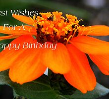 Best Wishes For A Happy Birthday by kkphoto1