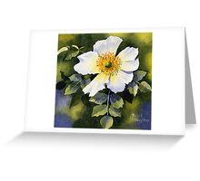 A Single Wild Rose Greeting Card