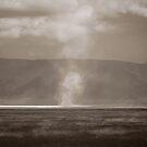 Salt Lakes, Ngorongoro Crater, 2009 by Sarah Mackie