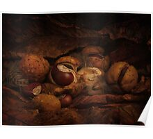 Stoop to Conkers Poster