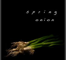 Spring Onion by cas slater