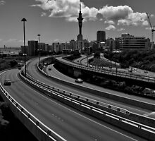 city drive by tim buckley | bodhiimages