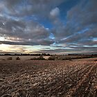 Natural  Colour  and  Landscape by Andy Freer