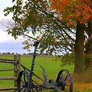 Fall Long Ago.... by Larry Llewellyn