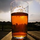 The New Forest: A Pint of Pure Gold by Rob Parsons